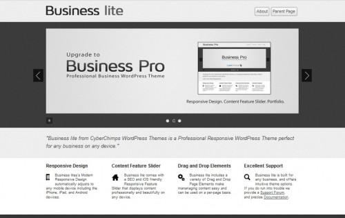 Business Lite