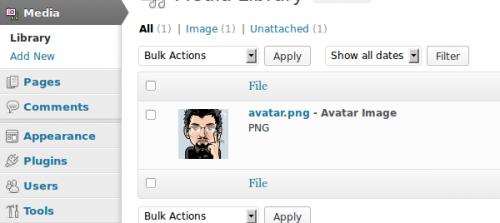 Create a WP Avatar Management Plugin