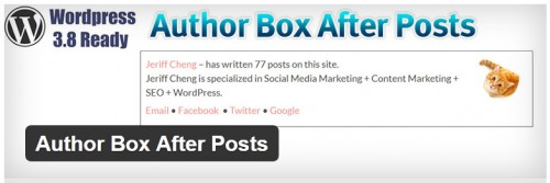 Author Box After Posts