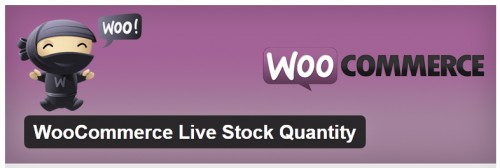 WooCommerce Live Stock Quantity