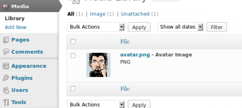 Create a WP Avatar Management Plugin