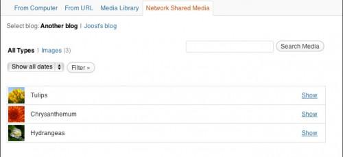 Network Shared Media