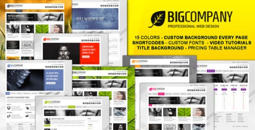 Big Company - Business & Portfolio WP Theme
