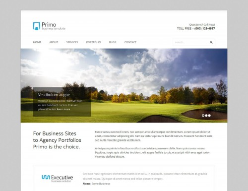 Primo WP - Business, Corporate WP Theme