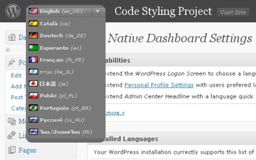 WP Native Dashboard