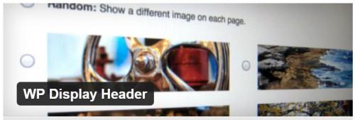 WP Display Header