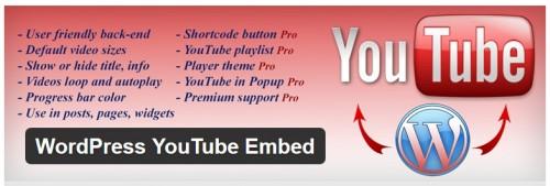 WordPress YouTube Embed